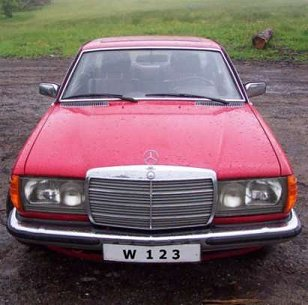 W123 Youngtimer rot